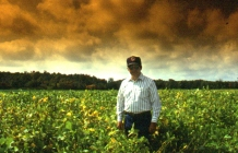 agriculture-photography